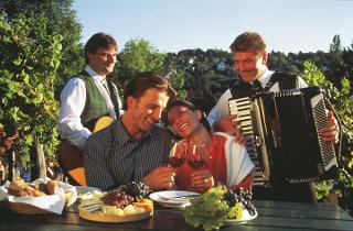 Weingartengenus