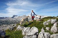 Wandergebiet Krippenstein Obertraun | © OOE Tourismus