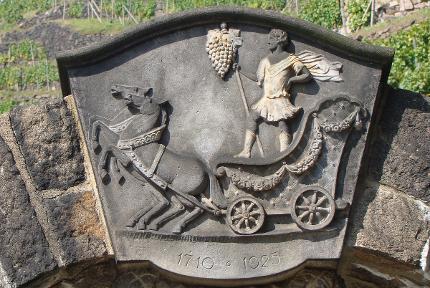 igeltour: Vivat Bacchus - Eine WeinWanderung durch die Niederlößnitz