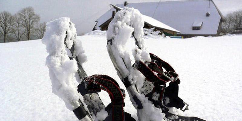Schneeschuhwanderung: Halbtagestour in Hinterzarten