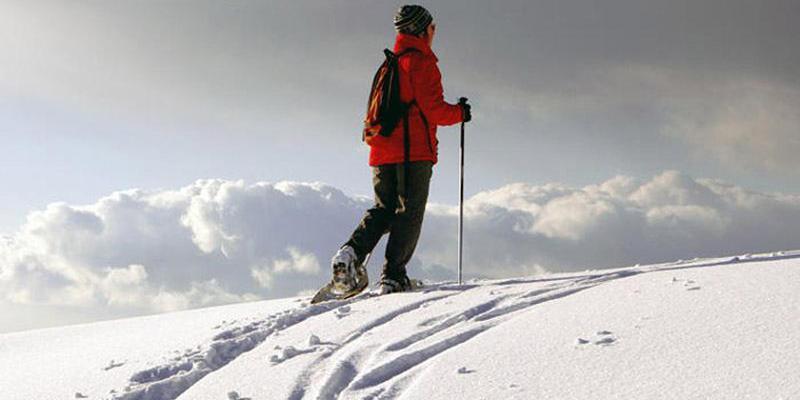 Schneeschuhwanderung: Tagestour Herzogenhorn-Spießhorn-Runde