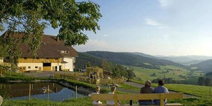 Segwaytour: Panoramatour im Hochschwarzwald