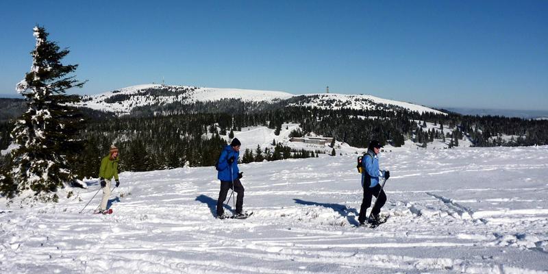 Schneeschuhwanderung: Halbtagestour auf den Feldberg