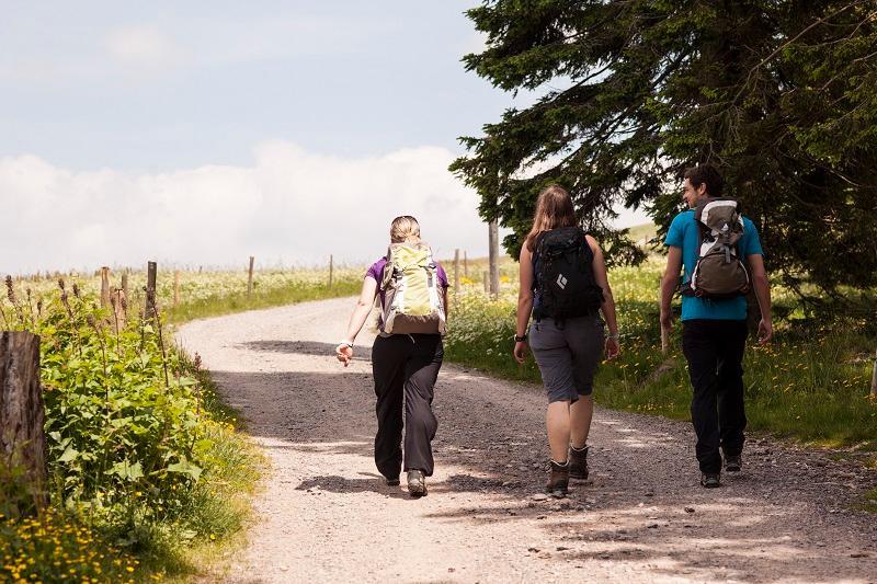 Erlebnis: Wanderlust im Hochschwarzwald - Herbst-Wanderung in der Bergwelt Todtnau