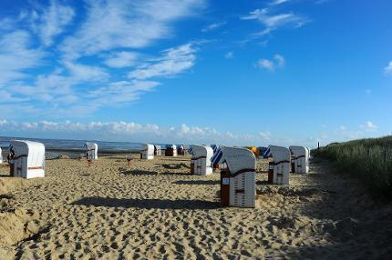 Strandkorb in Feld 2