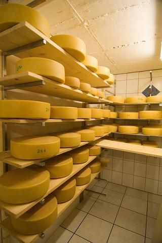 Ein Blick in unsere Käserei
