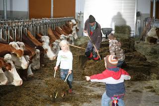Im Stall dürfen die Kinder mithelfen