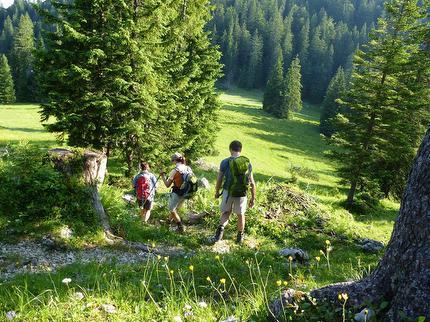 Chiemgau-Erlebnis-Runde: Rund um den Spitzstein