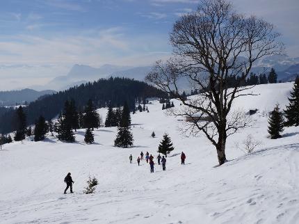 Erster Schnee über Sachrang - Einfache Schneeschuhwanderung