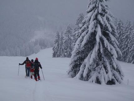 Leichte Schneeschuhtour auf einen kleinen Berg mit Chiemseeblick