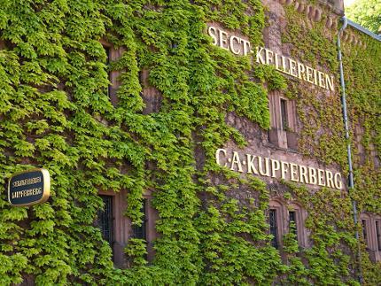 Besucherzentrum Haus Kupferberg
