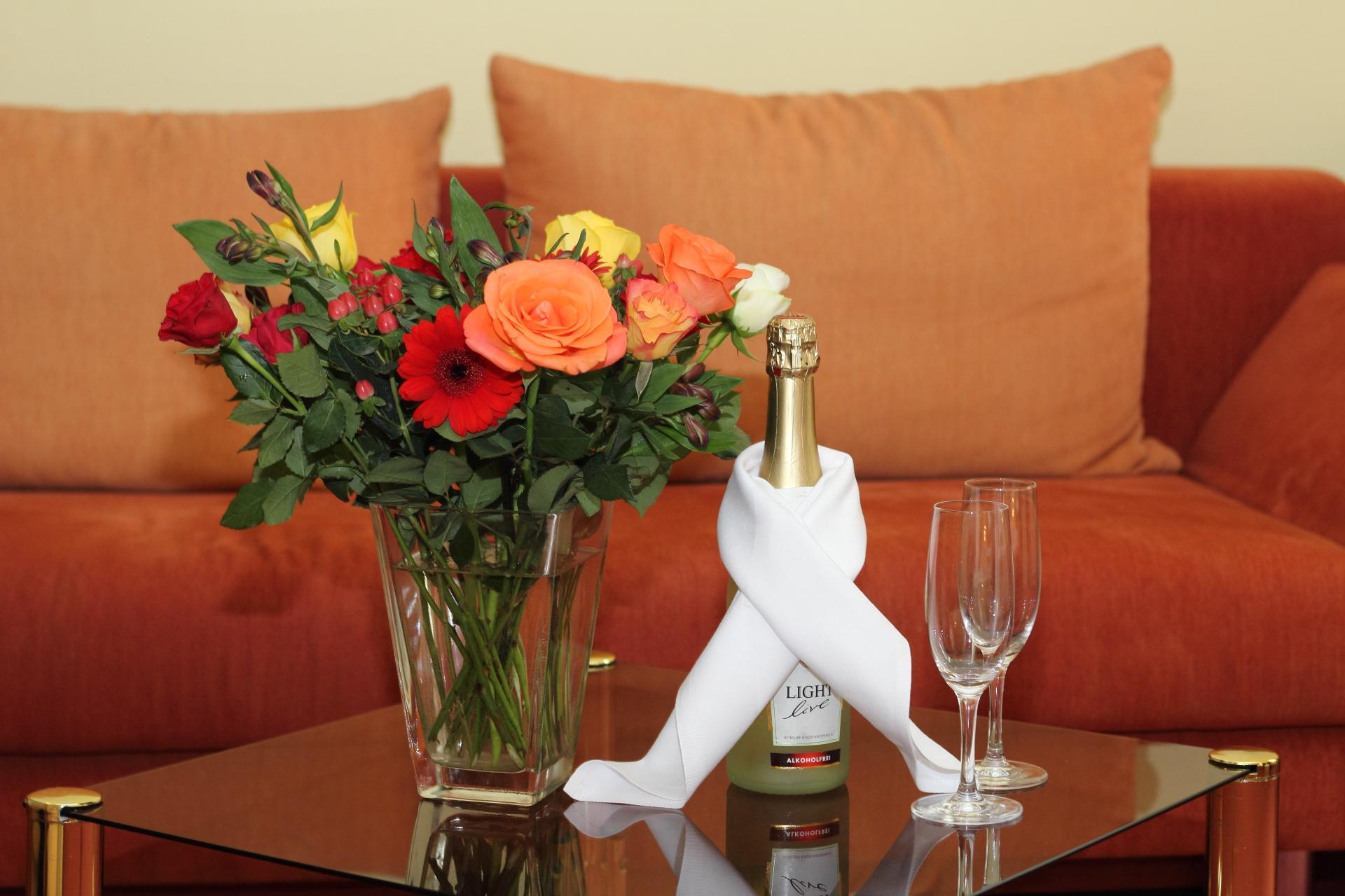 Hotel & Restaurant Kranichsberg Empfang auf dem Zimmer