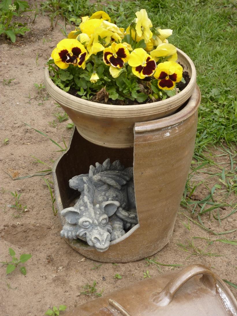 Plon/Drachen im Blumenkasten
