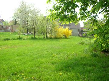 Gelände - Garten