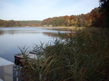Herbstzeit am Seehotel Ichlim