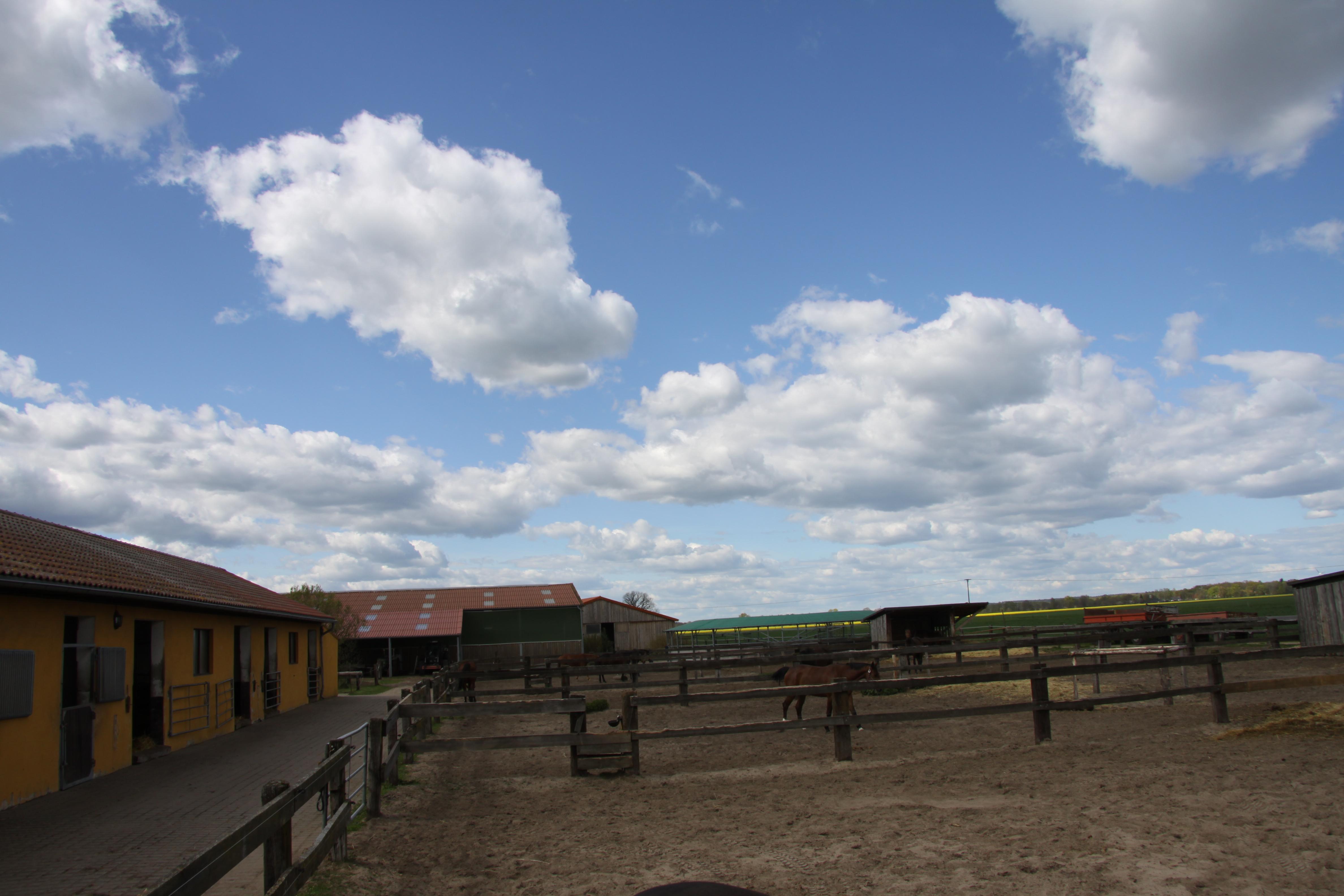 Pferdehof