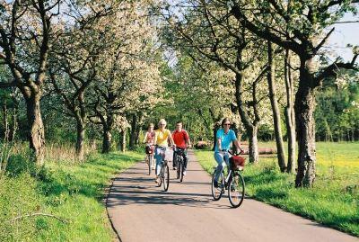 Radfahren im Naturpark