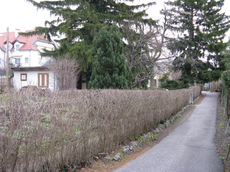 Rechteinhaber: © Haus Schön Elfriede Bad Vöslau