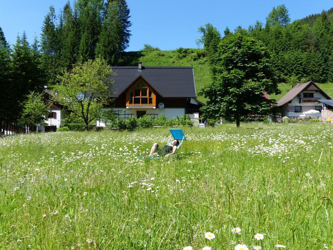 Appartement de vacances Göstling (Göstling an der Ybbs). Göstling (2780810), Göstling an der Ybbs, Mostviertel, Basse Autriche, Autriche, image 36