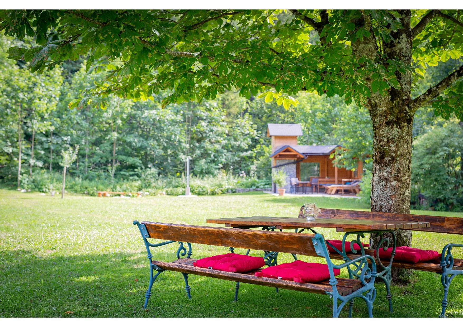 Appartement de vacances Göstling (Göstling an der Ybbs). Göstling (2780810), Göstling an der Ybbs, Mostviertel, Basse Autriche, Autriche, image 51