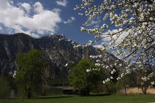 Frühling in Bad Goisern