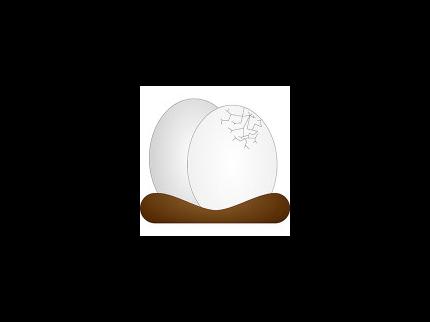 Vom Ei in die Wildnis – die Eulen des Wildnisgebietes Dürrenstein