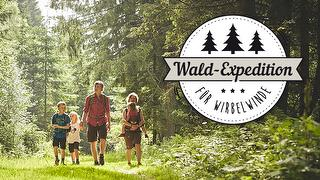 Wald-Expedition