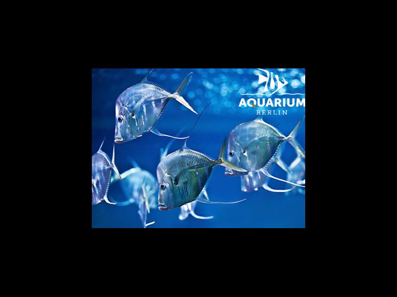 Aquarium Berlin / Rechteinhaber: © ©Aquarium Berlin