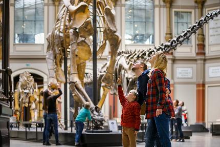 Museum für Naturkunde: Zeitfenster-Ticket Vormittag Mini-Familie (1 Erw+2 Kinder>14J)