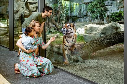 Tageskarte: Tierpark Berlin Erwachsener