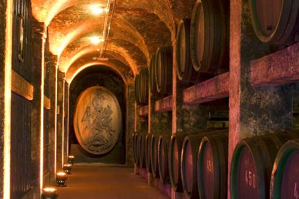 Guided tour of town halls' wine cellar