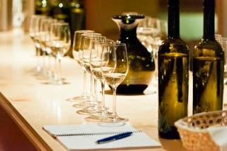 Weinverkostung Schloss wackerbarth