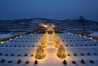 Lichterglanz im Winter Schloss Wackerbarth