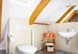 Badezimmer mit WC, Dusche und großem Spiegel / Urheber: Lutz Gerhardt / Rechteinhaber: © Lutz Gerhardt