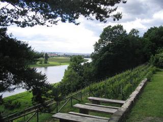 Blick vom Weinberg am Schloss Albrechtsberg