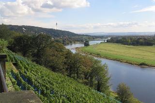 Blick vom Weinberg am Lingnerschloss zum Blauen Wunder