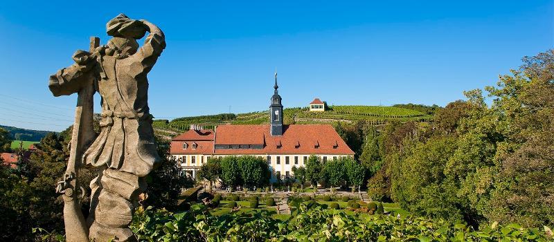 Blick über die Weinberg auf Schloß Seußlitz und die George Bähr Kirche / Urheber: Elbtal Tours / Rechteinhaber: © Elbtal Tours