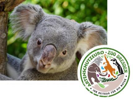 Zoo Dresden - Eintritt Schwerbehinderte inkl. Artenschutzeuro* - 1 Begleitperson kostenfrei