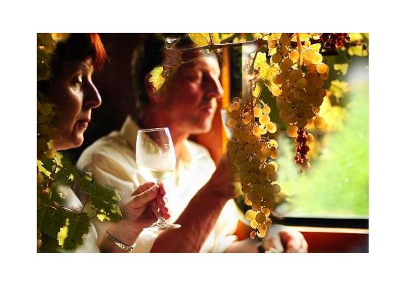 Weingenuss auf schmaler Spur / Urheber: Kühne / Rechteinhaber: © Sachsenträume