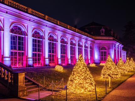 """Eintritt """"Christmas Garden Dresden"""" - Familien - max. 5 Personen"""