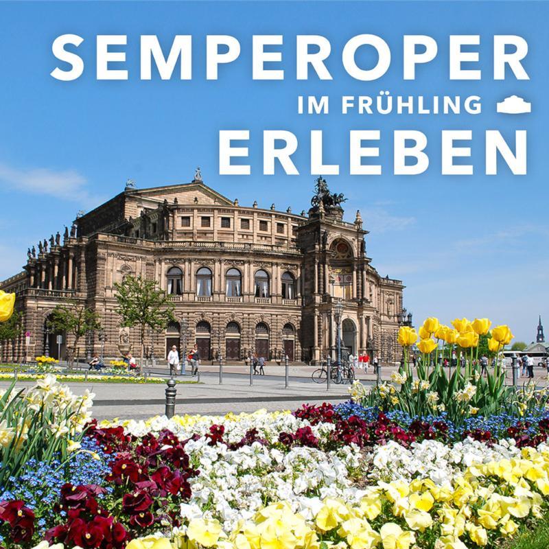 Semperoper im Frühling erleben / Urheber: Avantgarde Sales & Marketing Support GmbH / Rechteinhaber: © Avantgarde Sales & Marketing Support GmbH