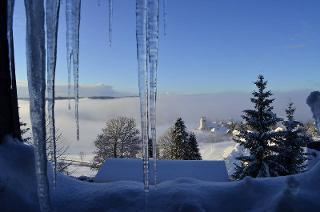 Blick vom Haus auf Saig im Winter