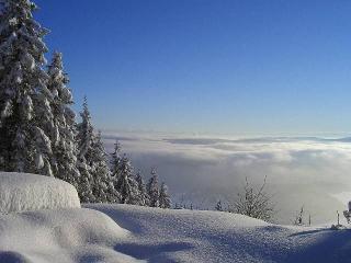 Winterpanorama in Hausnähe