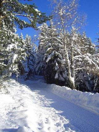 Winterwanderweg Saig
