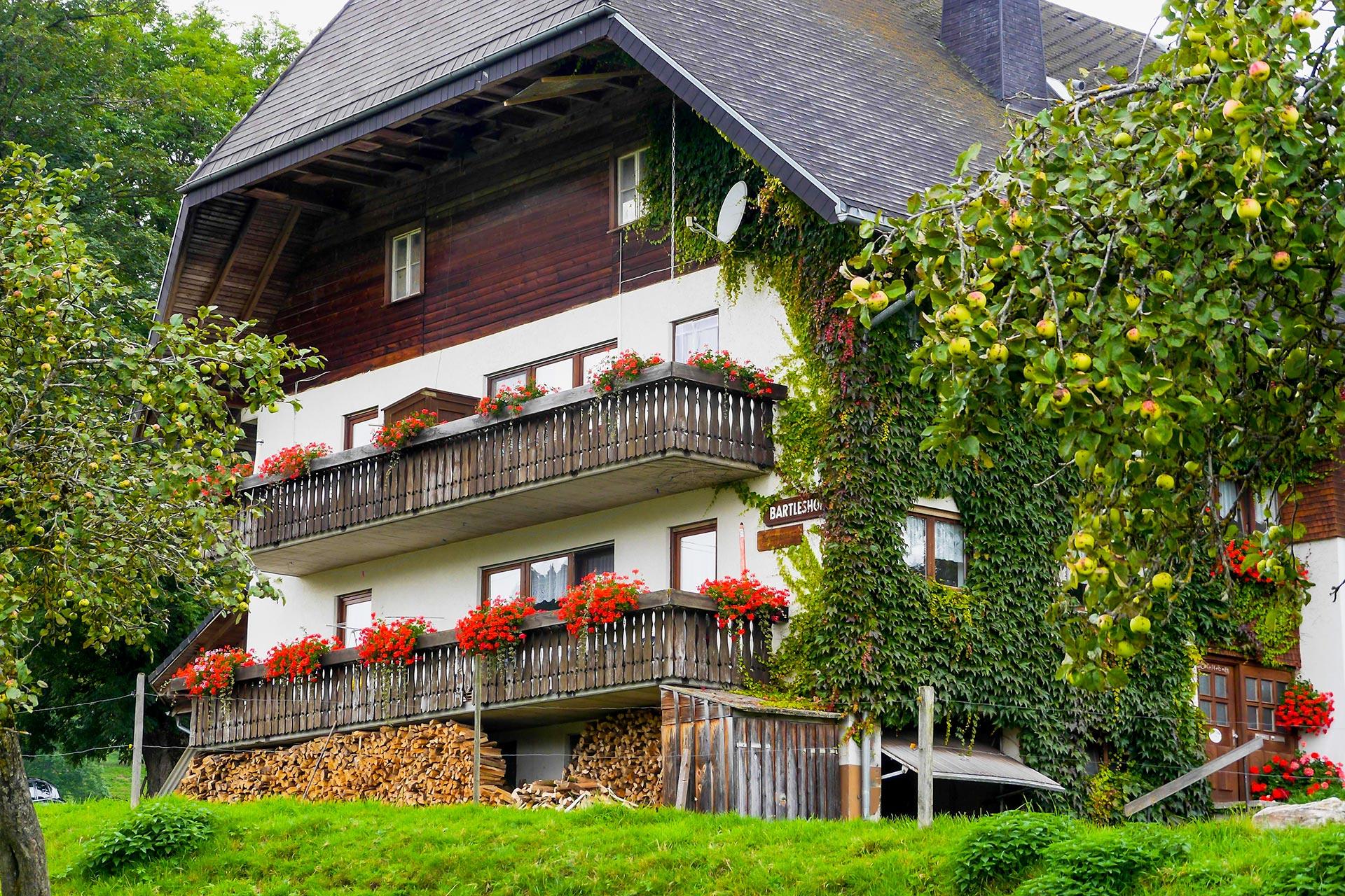 Bartleshof, (Breitnau). Ferienwohnung, 80qm, 2 Sch Ferienwohnung