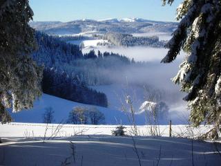 Blick zum Feldberg mit Rotenhof im Nebel