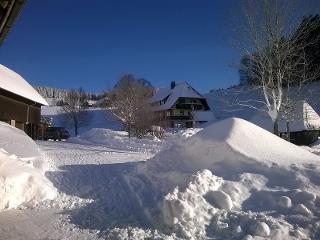 Schneemassen auf dem Rotenhof