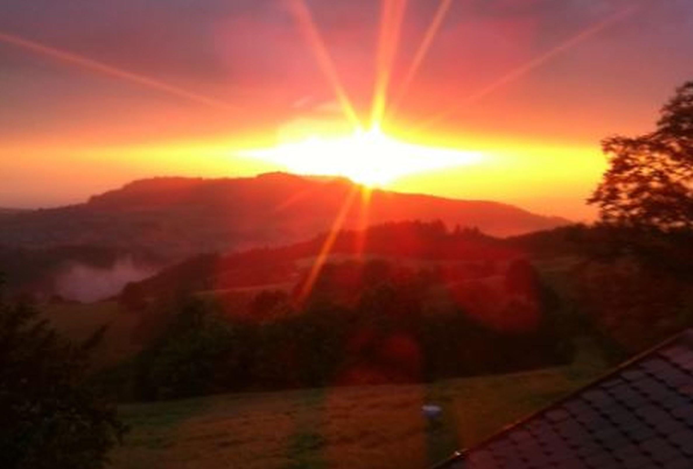Ferienwohnung Panoramablick, (Horben). Nichtraucher-49qm, 1 Schlafraum, 1 Wohn-/Schlafraum, max. 3 Perso (2717405), Horben, Schwarzwald, Baden-Württemberg, Deutschland, Bild 5