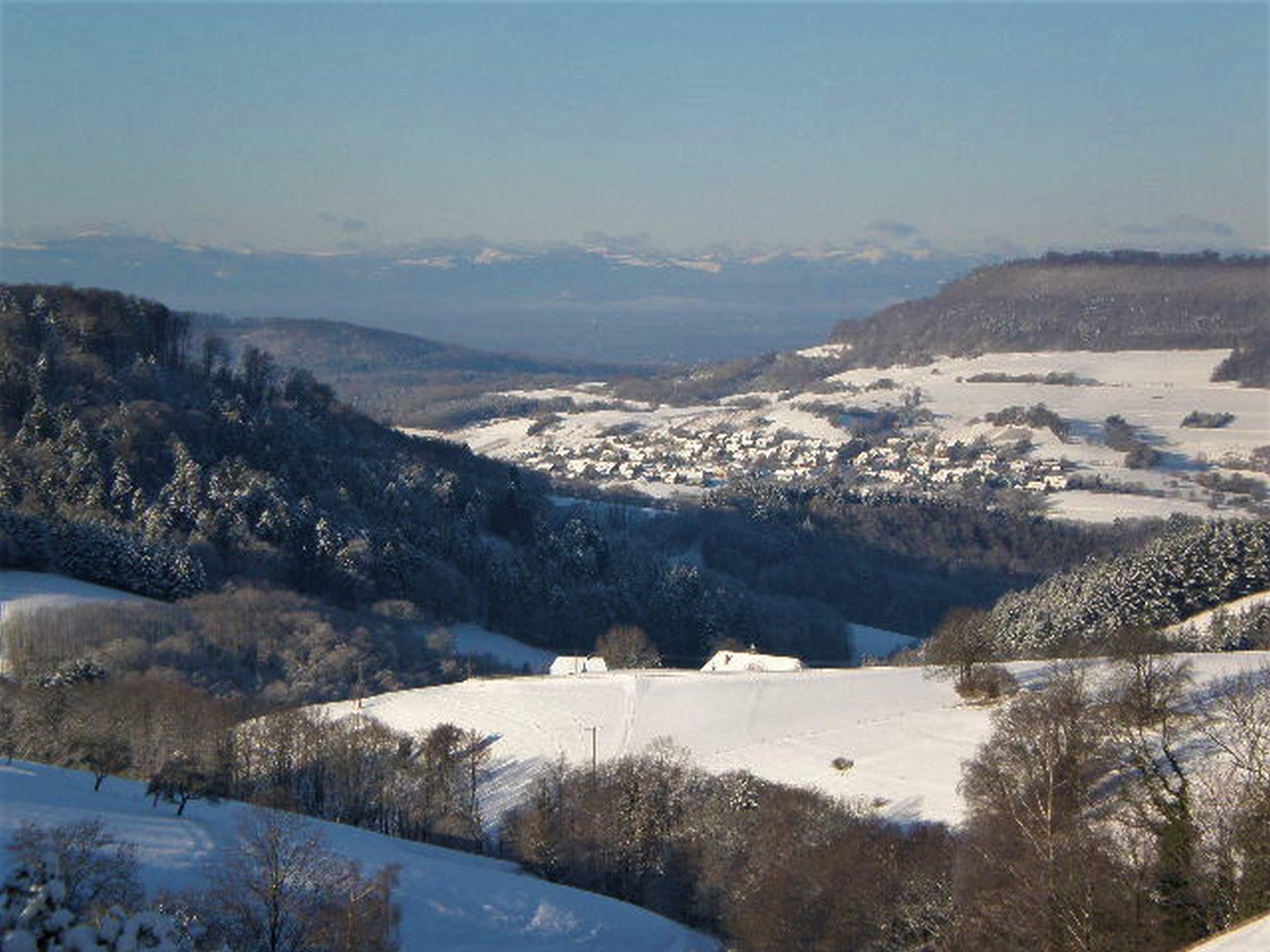 Ferienwohnung Panoramablick, (Horben). Nichtraucher-49qm, 1 Schlafraum, 1 Wohn-/Schlafraum, max. 3 Perso (605187), Horben, Schwarzwald, Baden-Württemberg, Deutschland, Bild 6