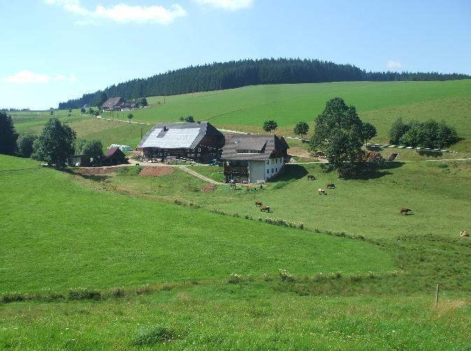 Ferienwohnung Altvogtshof, (Furtwangen). Ferienwohnung Lothar, 80qm, 2 Schlafräume, max. 4 Personen (2717422), Furtwangen, Schwarzwald, Baden-Württemberg, Deutschland, Bild 21